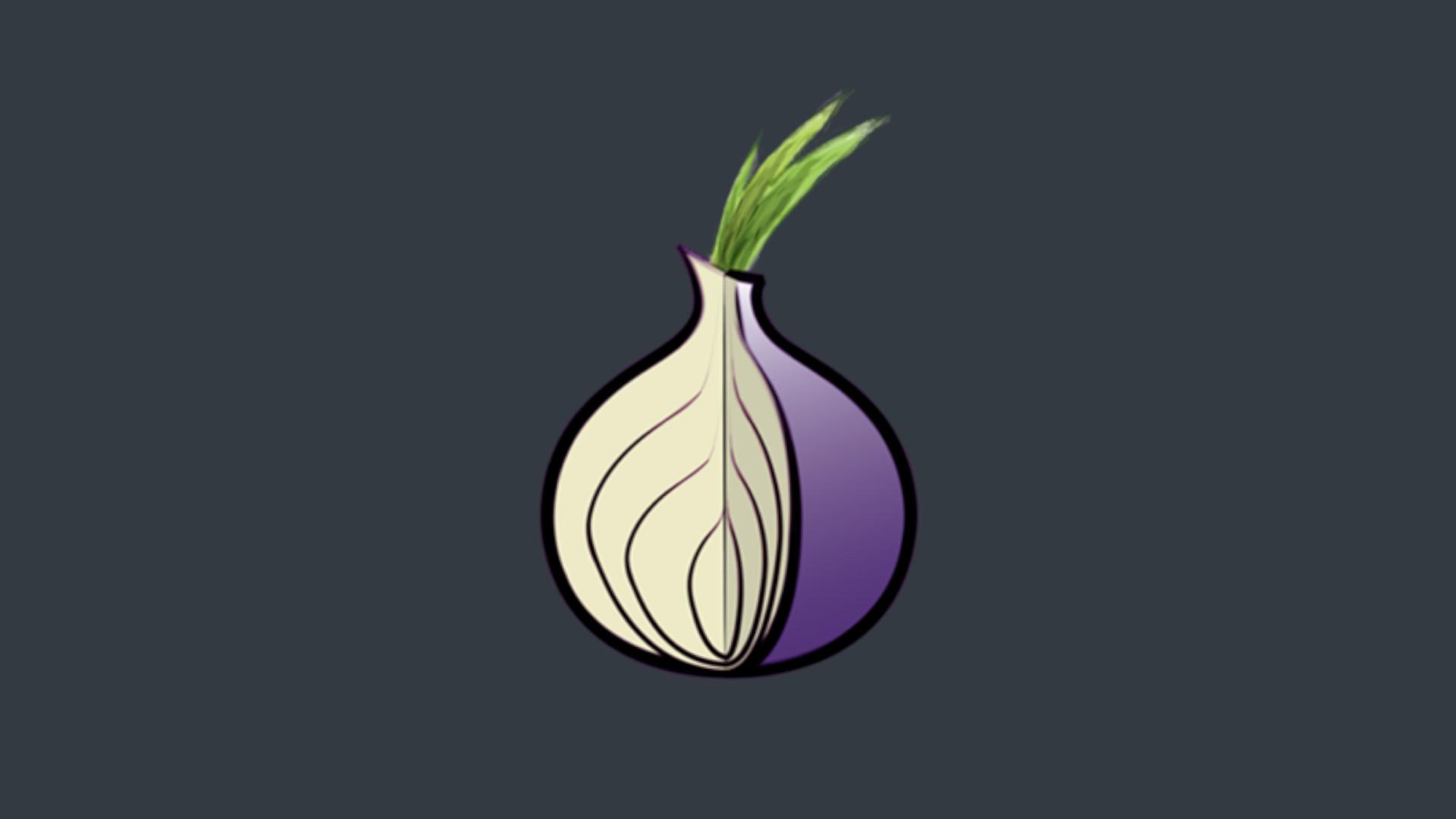 tor browser с луковицей гидра